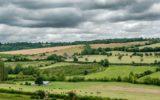 Verso lo Statuto del territorio e del paesaggio rurale
