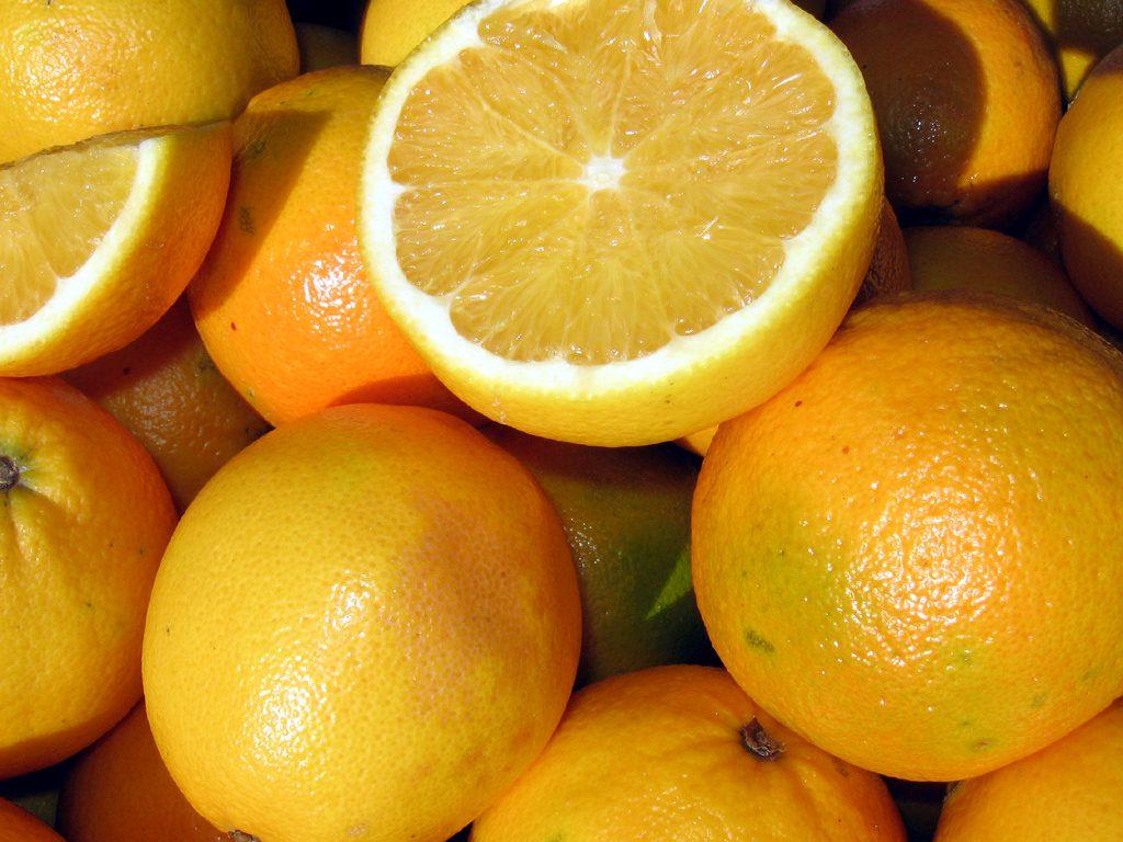 Vitamine e aminoacidi: il loro ruolo nelle cellule staminali
