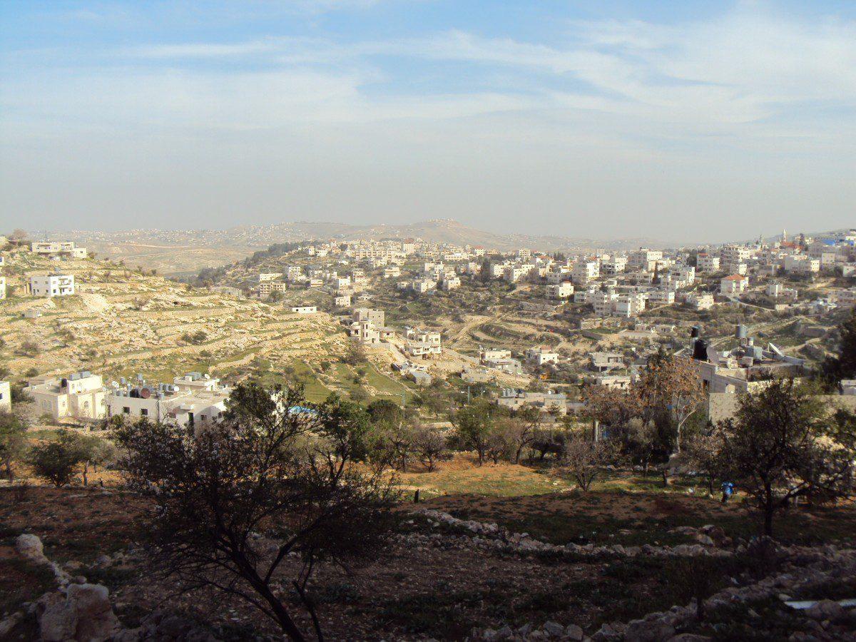 WFP in Palestina: i tagli previsti
