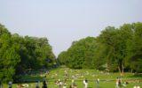 WWF: La legge sui parchi non aiuta l'agricoltura