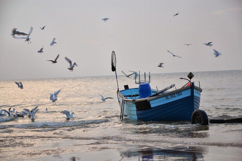 WWF: la pesca eccessiva sottrae risorse ai paesi poveri