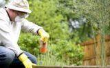 WWF: un primo passo contro i pesticidi