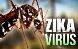 Zika è ormai presente in 42 Paesi nel mondo