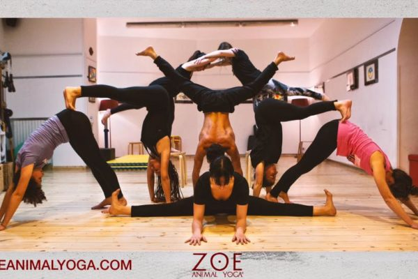 Zoé Animal Yoga