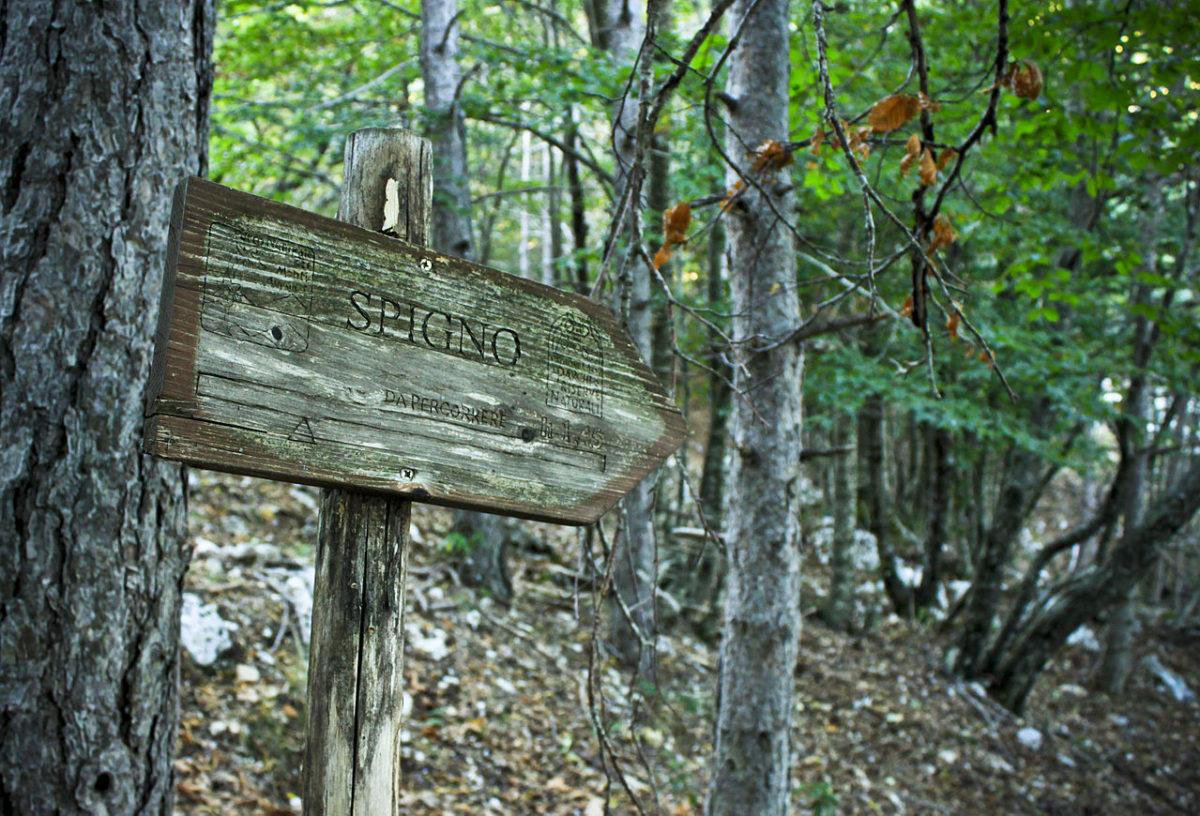 "Ambiente: al via il ""Sentiero dei Parchi"""