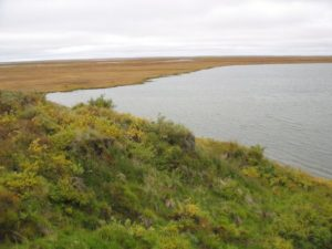 Il permafrost in Siberia si scioglie e l'effetto serra globale aumenta