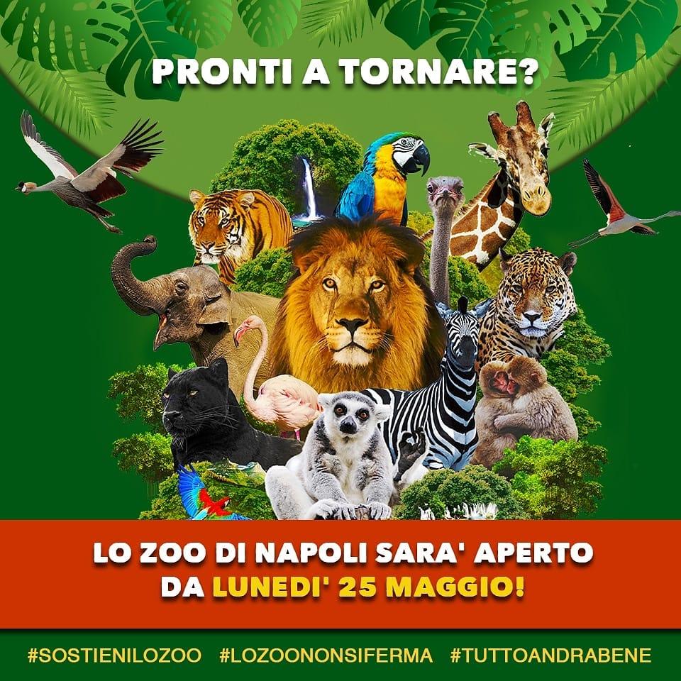Nuovi arrivi allo Zoo di Napoli
