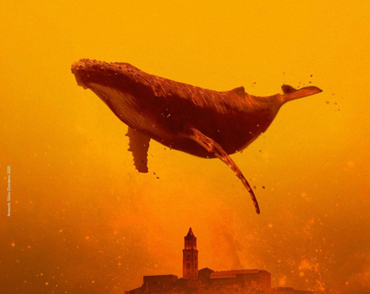 Nasce il Matera Film Festival nella bellissima città dei sassi