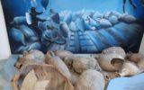 Il Museo del mare a San Benedetto del Tronto