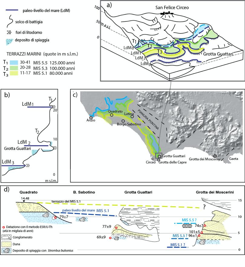 I Neanderthals e le oscillazioni del livello del mare