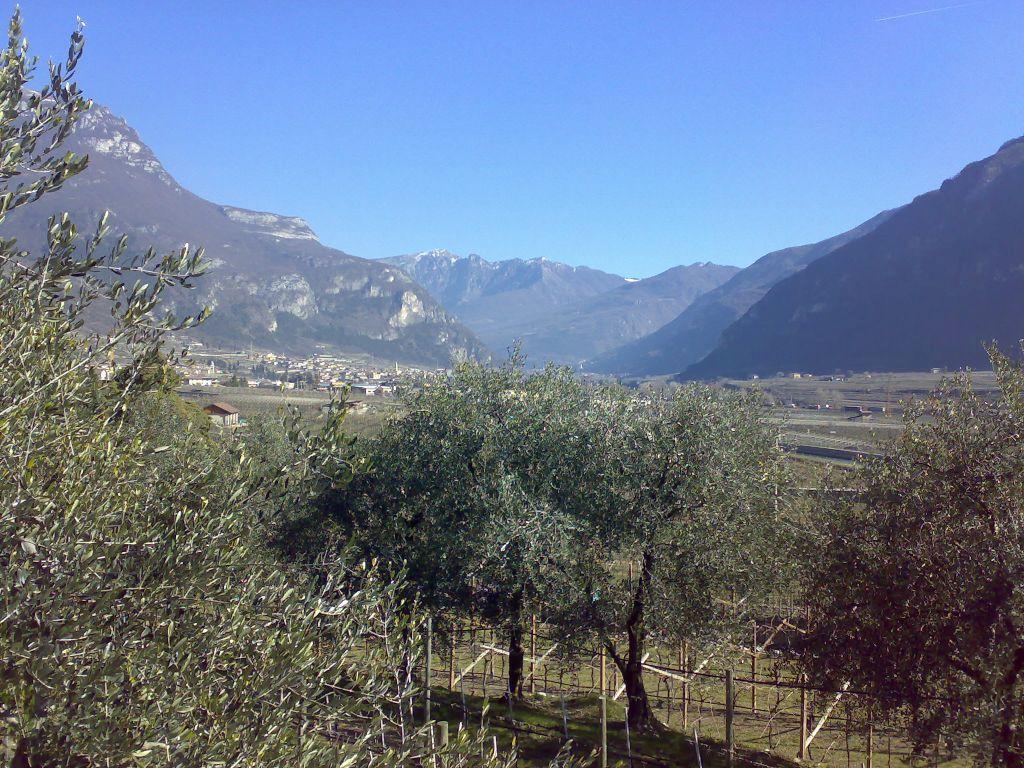 La bioeconomia decolla anche in Trentino