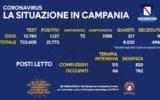Campania Covid 19