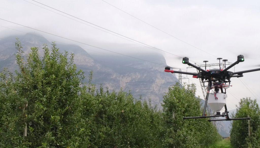 Droni in campo per rilasciare insetti sterili contro la mosca della frutta