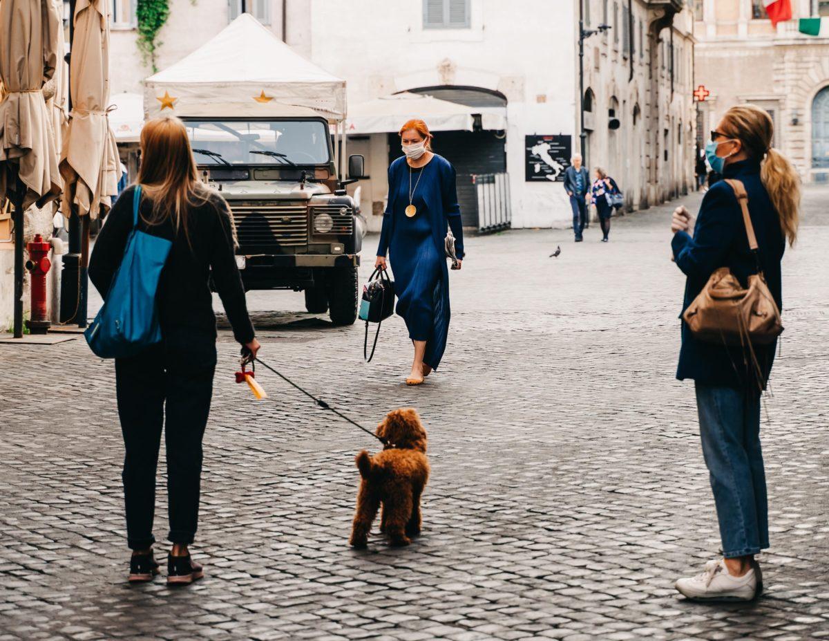 Cani: che ruolo hanno nella pandemia da Covid-19?