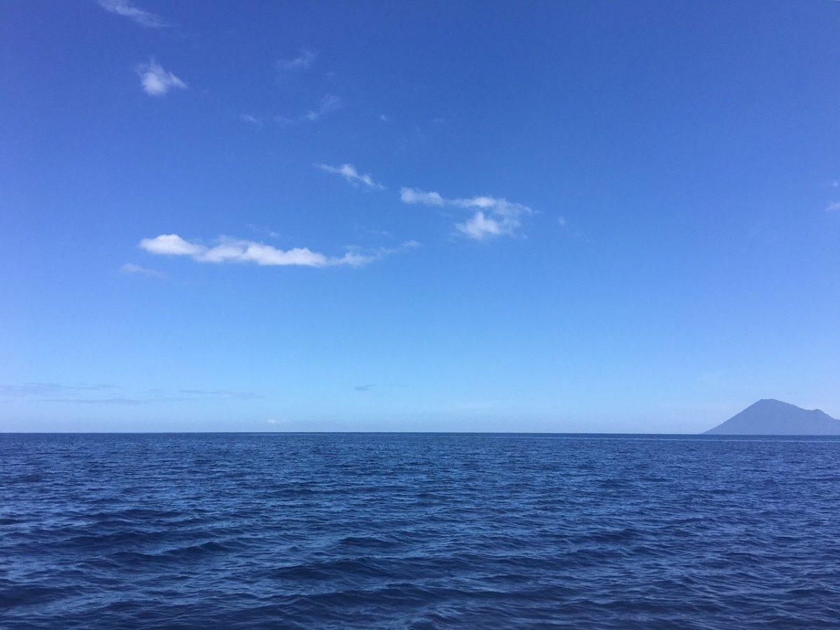 Davide Oldani Blue Ocean Strategy