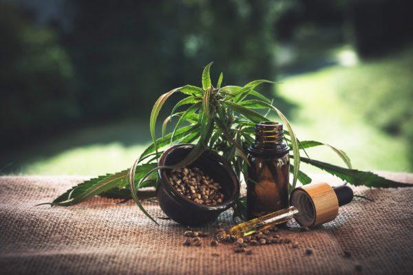 L'olio di CBD: un toccasana naturale per il nostro organismo