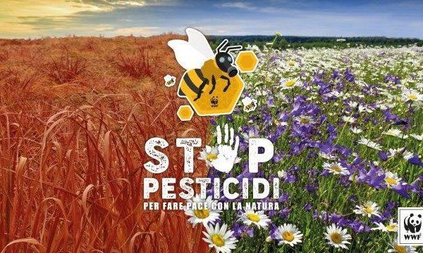 Stop pesticidi: lettera aperta dell'Alleanza Ice. Salviamo api e agricoltori