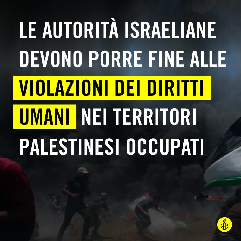 Palestina o Israele, Palestina e Israele?