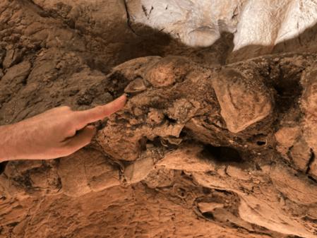 Circeo: la recente scoperta dei reperti Neandertaliani