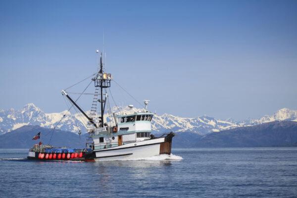 MSC promuove l'importanza di una pesca sostenibile come fonte di sostentamento
