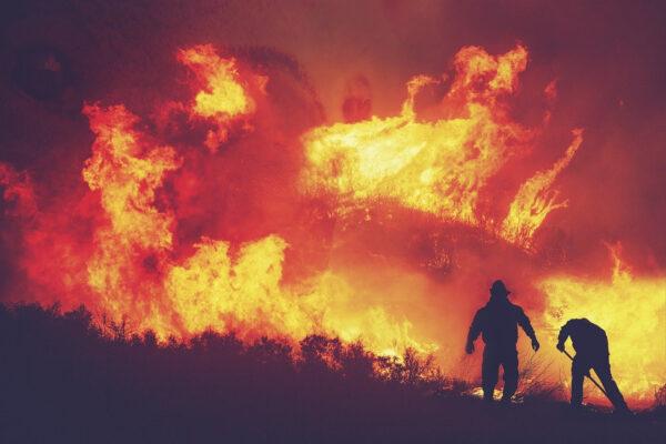 Incendi: prevenirli per tutelare il patrimonio forestale