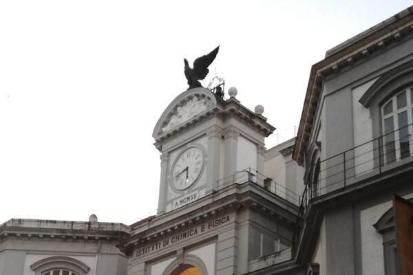 No tax area a 26.000 euro alla Federico II, tra le più alte tra i grandi Atenei